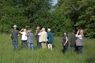 Gruppe-auf-der-Knabenkrautwiese-beim-Beobachten-des-Schwarzstorchs